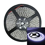 5M DC24V 75W 300x5050 SMD LED 3000-3600LM 6000-6500K  Strip Light White