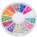 12 Color The Beautiful Natural Shell Powder Nail Art  Decoration kits