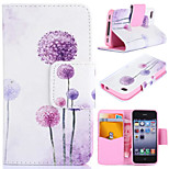 Purple Dandelion Pattern with Card Bag Full Body Case for iPhone 4/4S