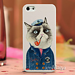 Color Drawing Fashion Style Protection Shell for iPhone5/5s  Maiya-P616