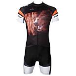 PaladinSport Men's  Cycyling Jersey + Shorts  Bike Suits DT551 Brown Bear