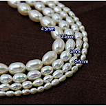 Beadia 38Cm/Str 4.5mm Oval Real Natural Freshwater Pearl Beads DIY Accessories