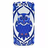 Owl Pattern Transparent Frosted PC Back Cover For  iPhone 5/5S