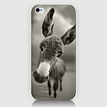 The Pony Pattern Case Back Cover for Phone5/5S Case