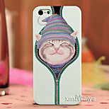 Colored  Drawing Fashion Style Protection Shell for iPhone5/5s-P188