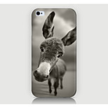 The Pony Pattern Case Back Cover for Phone4/4S Case