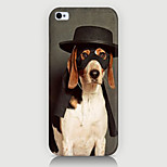 Cool Dog Pattern Case Back Cover for Phone5/5S Case