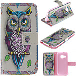 Personality Owls PU Leather Full Body Case with Stand and Protective Film for HTC One M8 Mini