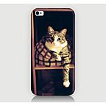 Letto caso del modello del gatto della copertura posteriore per phone4 caso / 4s