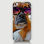 Fashion Dog Pattern Case Back Cover for Phone5/5S Case