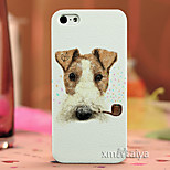Colored  Drawing Fashion Style Protection Shell for iPhone5/5s Maiya-P121