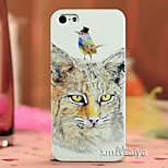Colored  Drawing Fashion Style Protection Shell for iPhone5/5s-P221