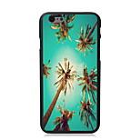 Summer Coconut Design Hard Case for iPhone 6 Plus