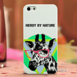 Color Drawing Fashion Style Protection Shell for iPhone5/5s  Maiya-P618