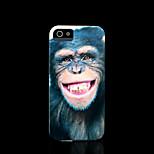 patrón chimpancé dura para el iphone 5 caso para el iphone 5 s