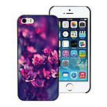 Blooming Flower Design Hard Case for iPhone 5/5S