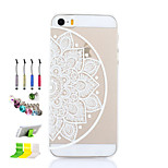 Semicircle Pattern Thin Transparent Hollow PC Phone Case And Dust Plug Stylus Pen Stand Combination for iPhone 5/5S