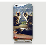 Three Cats Pattern Case Back Cover for Phone4/4S Case