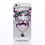 Tiger Pattern TPU Material Soft Phone Case for iPhone 5/5S