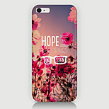Flowers in English Pattern Case Back Cover for Phone6 Case