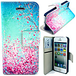 Colorful Peach Blossom Pattern with Card Bag Full Body Case for iPhone 5/5S