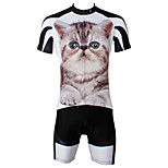 PaladinSport Men's  Cycyling Jersey + Shorts  Bike Suits DT564 BIGCAT
