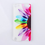 Sunflower Pattern PC Hard Back Cover Case for ipod Touch 5