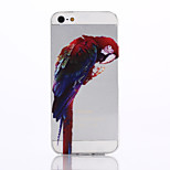 Parrot Pattern TPU Material Soft Phone Case for iPhone 5/5S