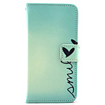 Blue  Pattern PU Leather Phone Case for iPhone5/5S