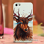 Colored  Drawing Fashion Style Protection Shell for iPhone5/5s-P160