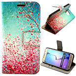 Beautiful Peach Blossom Pattern with Card Bag Full Body Case for Samsung Galaxy S6 G9200
