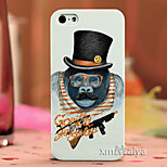 Colored  Drawing Fashion Style Protection Shell for iPhone5/5s-P202