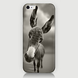 The Pony Pattern Case Back Cover for Phone6 Case