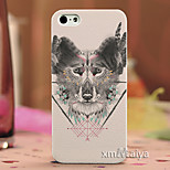 Colored  Drawing Fashion Style Protection Shell for iPhone5/5s-P191