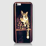Bed Cat Pattern Case Back Cover for Phone6 Case