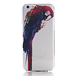 Parrot Pattern TPU Material Soft Phone Case for iPhone 6 Plus