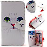 Teste padrão do gato bonito com saco do cartão caso de corpo inteiro para iPhone 4 / 4S