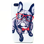 Eye Dog Pattern TPU Material Phone Case for iPhone 4/4S
