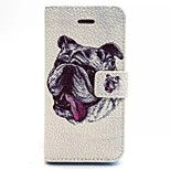 Dog Pattern PU Leather Material Card Full Body Case for iPhone 5/5S