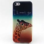 Giraffe  Pattern TPU Phone Case for iPhone 5C