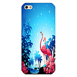 Red-Crowned Cranes Pattern Phone Back Case Cover for iPhone5C