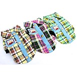 Cool Pet Clothes Green/Yellow/Purple Cotton T-Shirt For Dogs