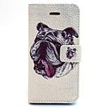 patrón de shar pei cuero de la PU caso de cuerpo completo con ranura para tarjetas y soporte para el iPhone 5 / 5s