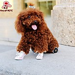 FUN OF PETS® Mesh Gym Shoes for Dogs(Assorted Colors and Sizes)