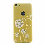 Dandelion Pattern Ultrathin Hard Back Cover Case For iPhone 5C