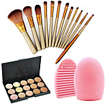 12 Makeup Brushes Set Nylon Professional / Travel / Eco-friendly Face / Eye / Lip Others