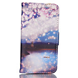 Lanterns Pattern PU Material Card Sided Bracket Full Body Case for iPhone 5/5S