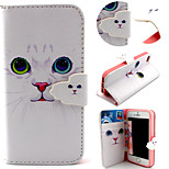 Cute Cat Pattern with Card Bag Full Body Case for iPhone 5/5S