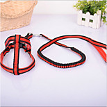 ABPet  Lovely Dog's Elastic Traction Rope