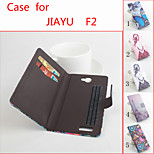 Flip Leather Magnetic Protective Case For Jiayu F2(Assorted Colors)